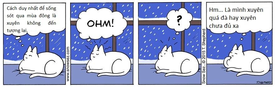 Triết lí sống của chú mèo luôn cười 'đểu': Chuẩn không cần chỉnh, chỉnh là mất chuẩn