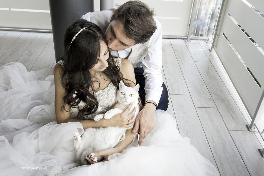 'Kiếp làm sen' không thể quên boss ngay cả khi đi... chụp ảnh cưới