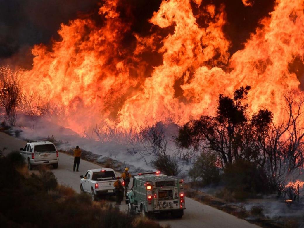 Lady Gaga mang bánh pizza và cà phê đến tiếp tế những nạn nhân phải sơ tán trong trận cháy rừng California