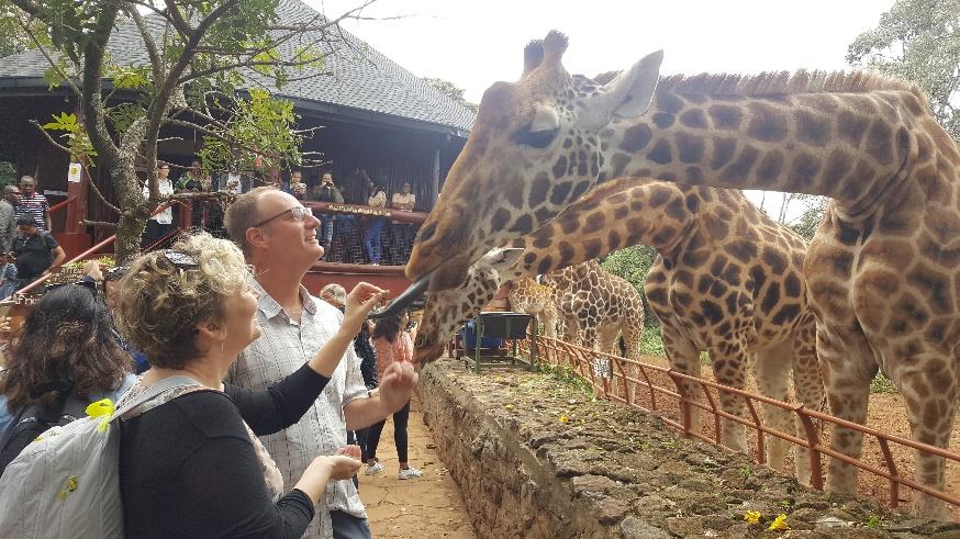 Vườn thú yêu cầu khách không cho động vật ăn tiền giấy vì ai đó đã ném hàng chục triệu vào chuồng hươu cao cổ