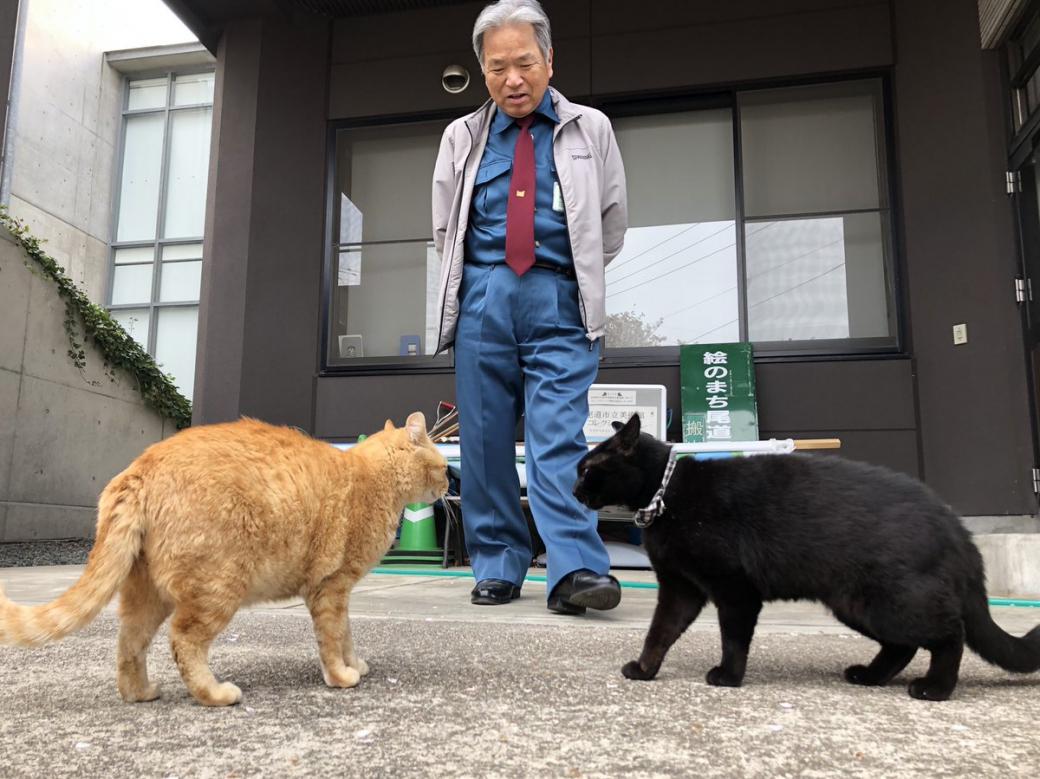 Một thời thân thiết cùng nhau đột nhập bảo tàng Nhật Bản, hai chú mèo bỗng 'chiến tranh lạnh' không thèm nhìn mặt