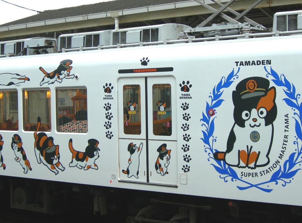 Những cô mèo cứu tuyến đường sắt ở Nhật Bản thoát khỏi cảnh đóng cửa