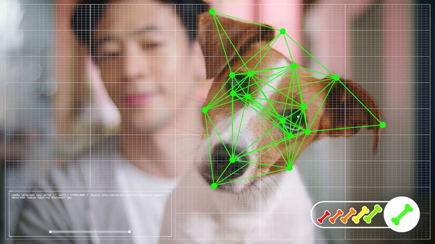 Lạ lùng công nghệ nhận dạng khuôn mặt giúp chó tự mua sắm những gì mình thích trên mạng