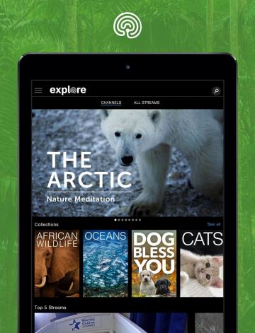 Giới thiệu 'Explore.org': Nền tảng xem live stream động vật chất lượng cao trên quy mô toàn cầu