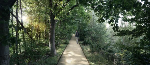 Ngắm con đường xoắn ốc đến 'chóng cả mặt' trong khu rừng Đan Mạch