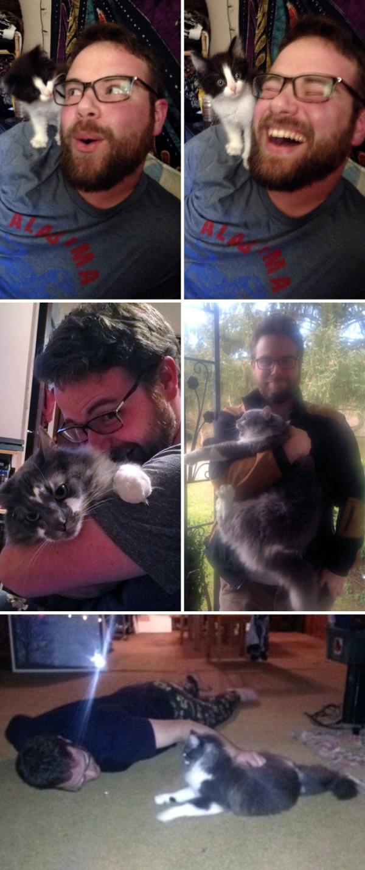 10 bức ảnh cho thấy lũ mèo đã 'thuần hoá' con người tốt như thế nào