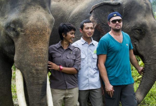 Bọ cánh cứng mới phát hiện ở Malaysia được đặt theo tên... Leonardo DiCaprio