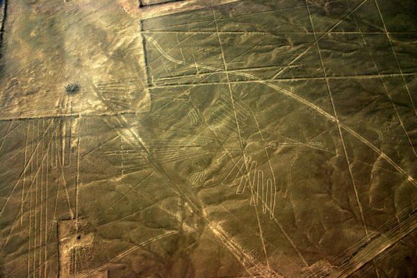 Đi tìm câu trả lời về những hình vẽ bí ẩn trên cao nguyên Nazca miền nam Peru