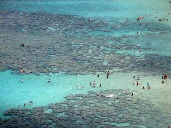 Hawaii cấm bán kem chống nắng cho khách du lịch vì lí do lạ lùng này