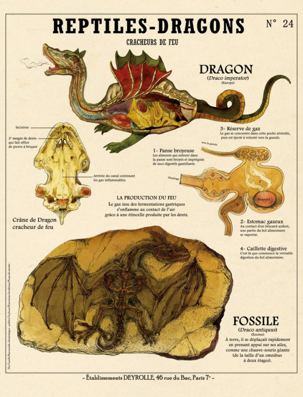 Giải phẫu những sinh vật kỳ bí trong truyền thuyết