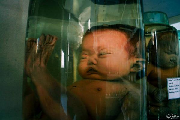 'Căn phòng quái thai' ngay giữa lòng Sài Gòn khiến người xem vừa sợ vừa xót xa