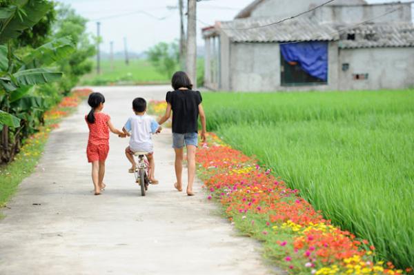 Những con đường không giá trị nghìn tỷ nhưng lại đẹp như tranh ở làng quê Việt Nam