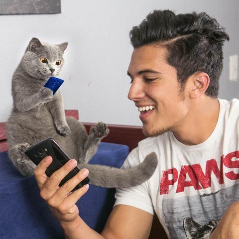 Khi các boss mèo cũng có thể trở thành Hot Youtuber!