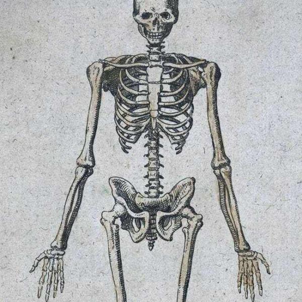 Những thí nghiệm quái đản mà người thực hiện đã 'hy sinh thân mình' vì sự phát triển của y học (P1)