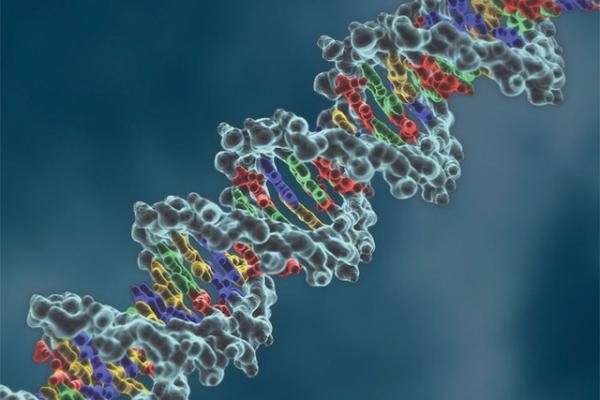 Không siêu việt như X-Men nhưng những người này cũng sở hữu gen di truyền hiếm có