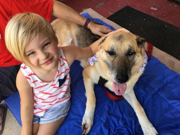 Thực hiện 'danh sách ước nguyện' đầy ý nghĩa của cô chó già có tuổi thơ bất hạnh