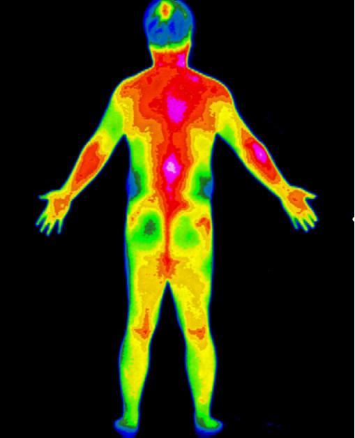 17 sự thật đáng kinh ngạc về cơ thể của con người