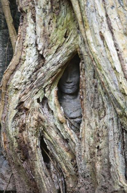 28 hình ảnh đáng sợ chứng minh thiên nhiên cũng biết hù dọa con người
