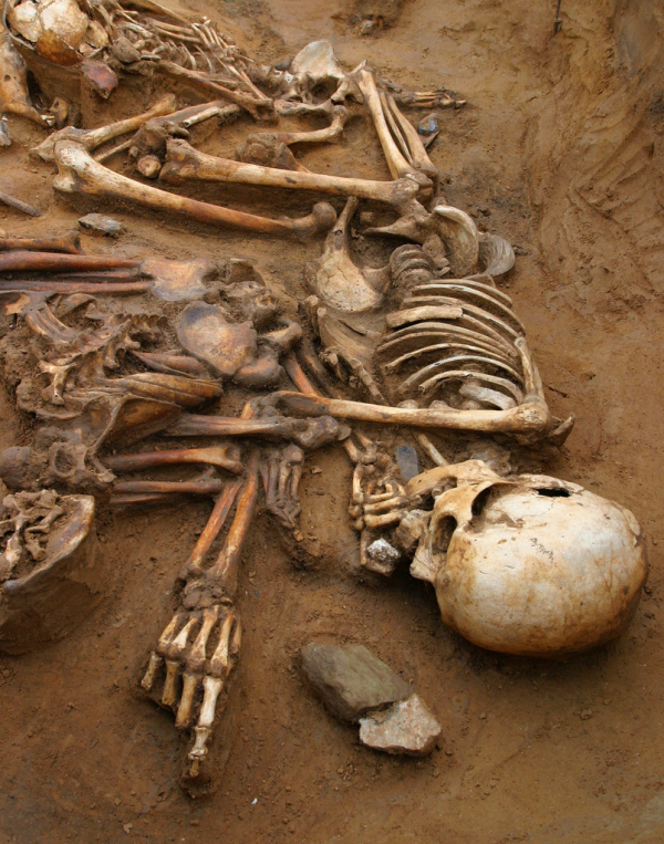 20 'thánh may mắn' cuộc sống lên hương nhờ vô tình 'lượm được' cổ vật ở những nơi không ngờ tời