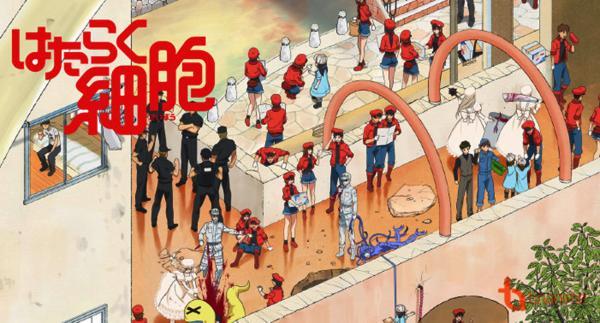 Anime 'Hataraku Saibou': Sẽ thế nào nếu một ngày các tế bào biến thành trai xinh, gái đẹp và... yêu nhau?