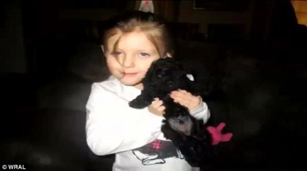 Xúc động chú chó Poodle qua đời vì xả thân bảo vệ cả gia đình chủ khỏi móng vuốt gấu dữ