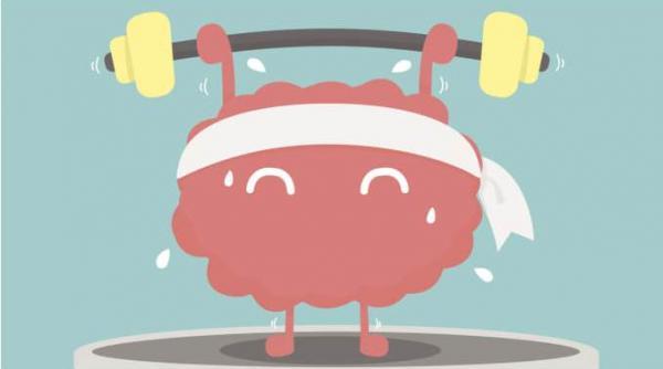Nghiên cứu từ đại học Mississippi: Muốn cải thiện trí nhớ chỉ cần làm điều này trong 15 phút