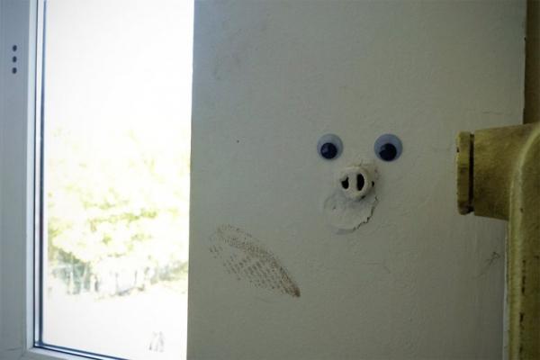 Khi những đồ vật đường phố vô tri được nhìn đời qua đôi mắt Googly ngộ nghĩnh