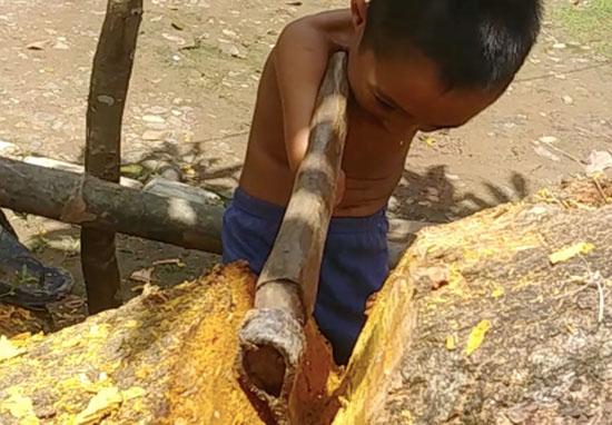 Cậu bé mất cả hai tay vẫn hăng say dùng rìu chặt củi khiến mọi người khâm phục