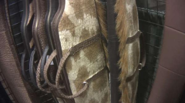 Hươu cao cổ có thể tuyệt chủng vì bị con người biến thành thảm, chăn, gối