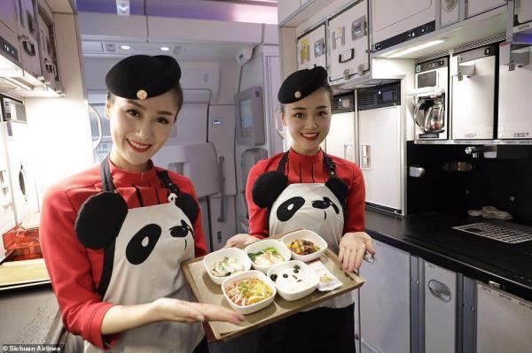 'Đường bay gấu trúc' khiến bao người xao xuyến vì mức độ cute 'kịch trần'