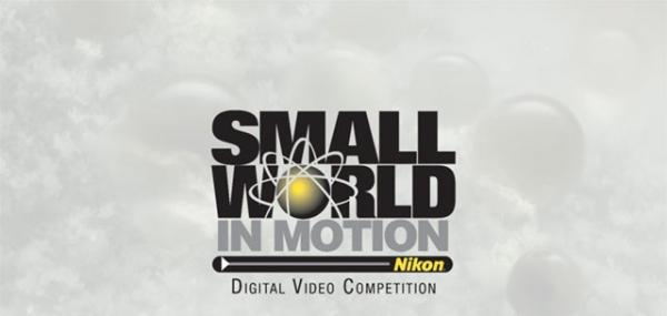 Thế giới siêu vi trong các tác phẩm chiến thắng cuộc thi Nikon Small World in Motion 2018