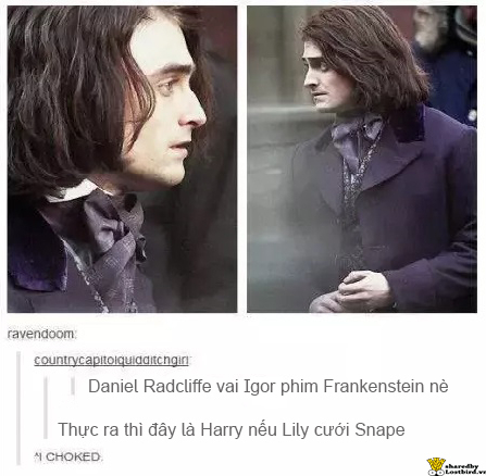 Những điều 'nhỏ nhặt nực cười' về 'Harry Potter' mà lạ thay bạn chưa bao giờ nhận ra