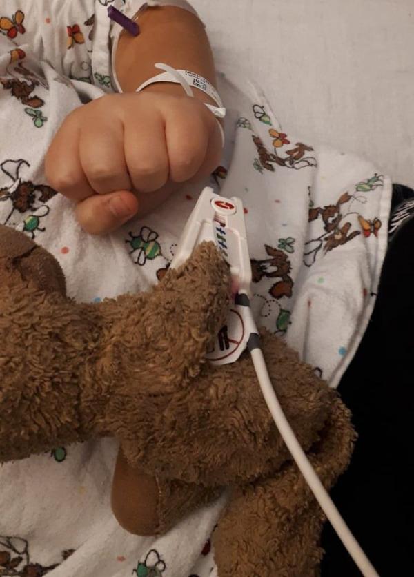 Chiều bệnh nhân nhí, bác sĩ tiến hành giải phẫu... gấu Teddy