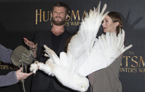 Những tình huống 'xấu hổ chưa kìa' khiến các sao Hollywood chỉ muốn 'độn thổ'