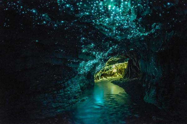 Những câu chuyện khám phá hang động ly kỳ hơn cả phim điện ảnh