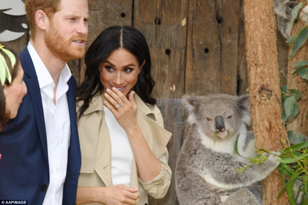 Hoàng tử Harry và vợ thăm Sydney, lực lượng xạ thủ bảo vệ 'khủng' như phim hành động bom tấn