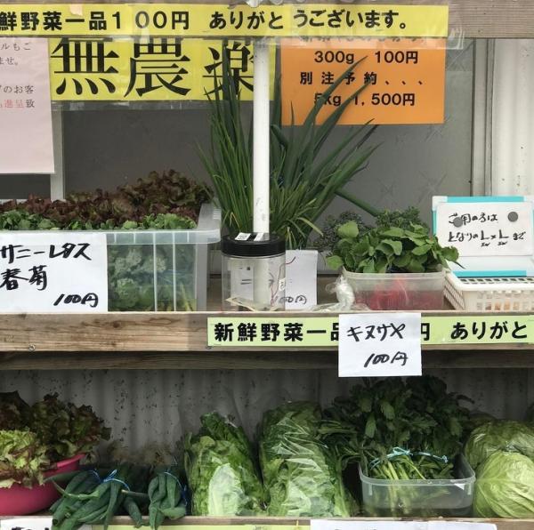 Những điều khiến Nhật Bản được tôn vinh là đất nước đến từ tương lai