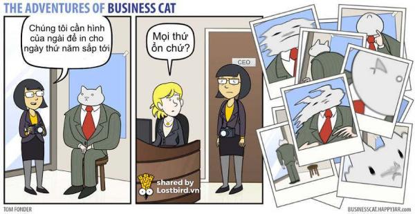 Chuyện gì xảy ra nếu như ông chủ của bạn là... mèo?