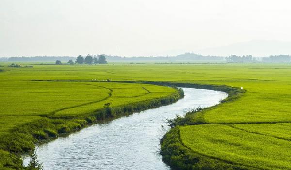 Blogger người Mỹ chia sẻ những trải nghiệm 'đắng' khiến 95% khách du lịch Âu Mỹ không quay lại Việt Nam