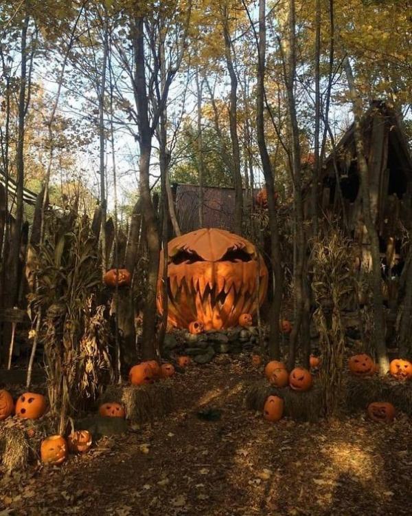 Bơi vào học hỏi cách trang trí Halloween dọa hàng xóm ăn ngủ không yên