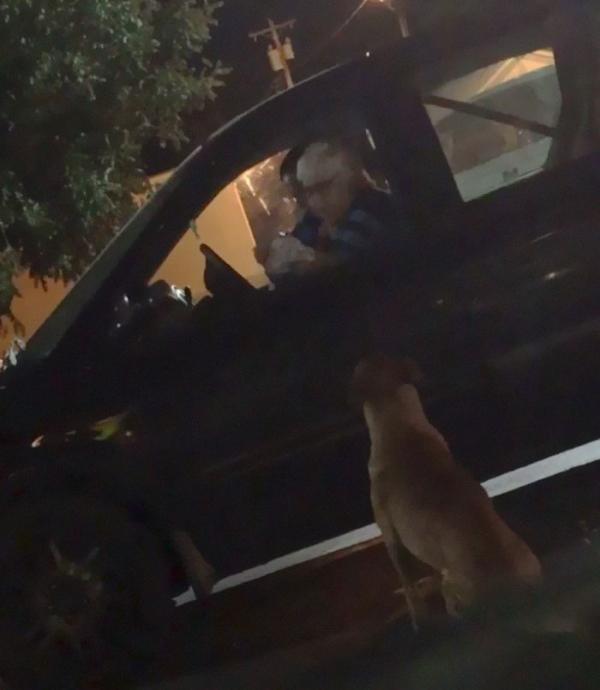 Cô chó 'đào mỏ' giả vờ làm chó hoang để xin xỏ hamburger của khách hàng tại McDonald's