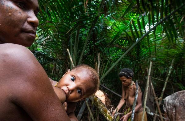 Bộ tộc ăn thịt người và sống trên cây ở Indonesia lần đầu tiên 'mở lòng' với thế giới