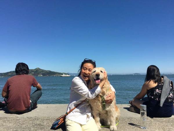 Chó cưng bị đầu độc bởi hàng xóm tại Trung Quốc, chủ nhân quyết tâm đi tìm công lý