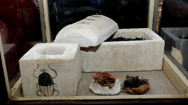 Không chỉ người, cả mèo và bọ cánh cứng cũng được ướp xác ở Ai Cập