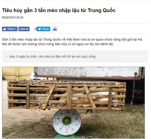 Trung Quốc: Thành phố ban lệnh cấm nuôi chó, hội yêu thú cưng lo ngại chỉ là cái cớ tiêu diệt chó lang thang