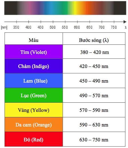 Bạn có biết: Màu sắc có các bước sóng năng lượng có thể khiến con người stress hoặc cải thiện tâm trạng?
