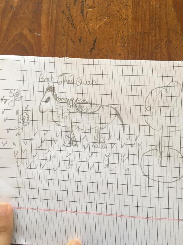 Cô giáo bắt vẽ ngựa, cả lớp lại sáng tạo ra đủ thứ loài động vật lạ lùng trên đời