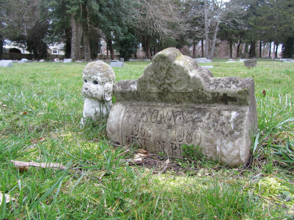 Đến thăm ngôi mộ của những chú chó nổi tiếng thế giới