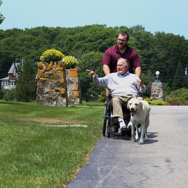 Xúc động trước hình ảnh chú chó của cố Tổng thống George H.W. Bush nằm bên quan tài chủ