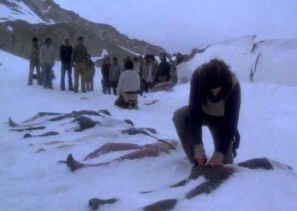Bạn nghĩ ăn thịt người như Hannibal là ngầu sao? Không đâu, có nhiều tác hại ghê rợn hơn bạn nghĩ đấy